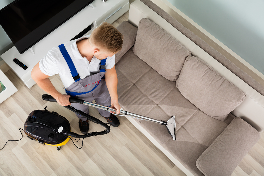 Why you should not ignore upholstery cleaning in Adelaide