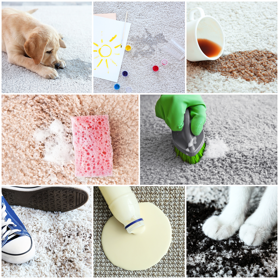 Carpet Care Tips for Bossier City, Shreveport, Stonewall, & Plain Dealing, LA Community Members